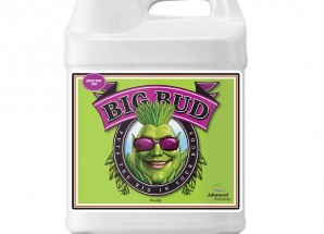 Advanced Nutrients Big Bud Liquid 0,25л